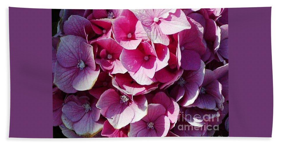 Hydrangea Hand Towel featuring the photograph Hydrangea Lavender Petals by Jussta Jussta