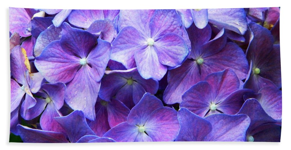 Flower Bath Sheet featuring the photograph Hydrangeas by Andrea Anderegg