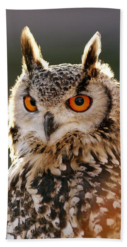 Adult Bath Sheet featuring the photograph Hypnoteyes Eurasian Eagle Owl by Roeselien Raimond