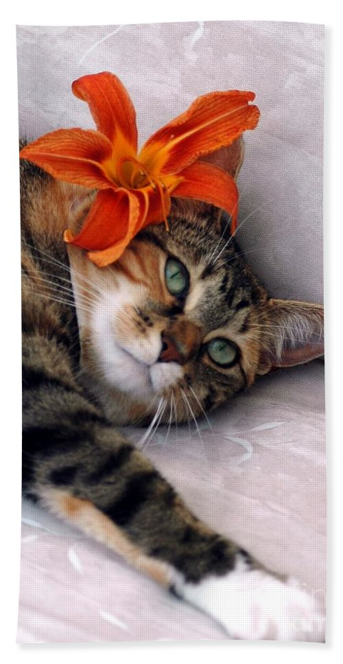 Cat Hand Towel featuring the photograph I Am Tired by Kathleen Struckle