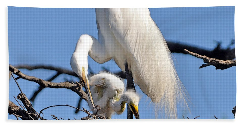 Egret Bath Sheet featuring the photograph I Do It Like My Mama by Lydia Holly