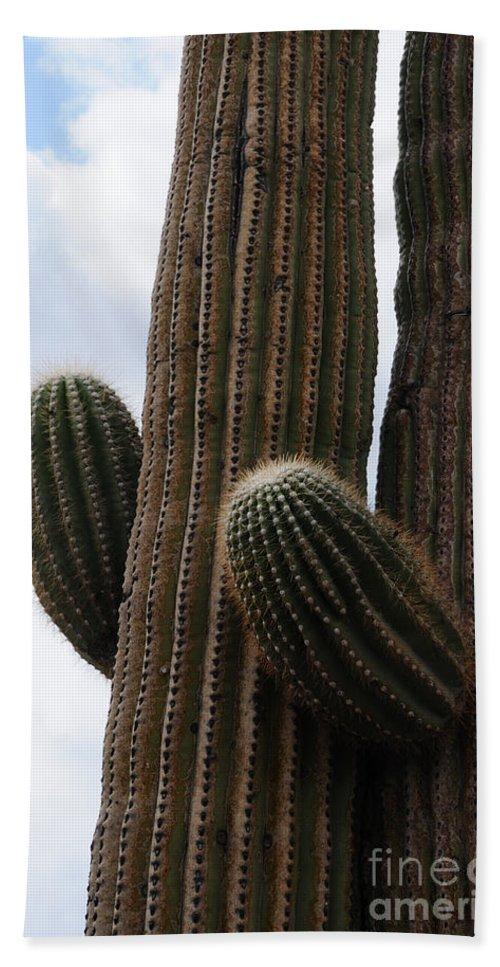 Saguaro Hand Towel featuring the photograph I Need A Hug by Vivian Christopher