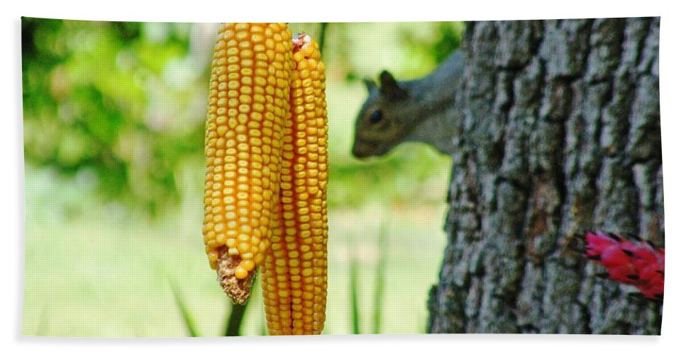 Corn Bath Sheet featuring the photograph I Spies It by Lizi Beard-Ward