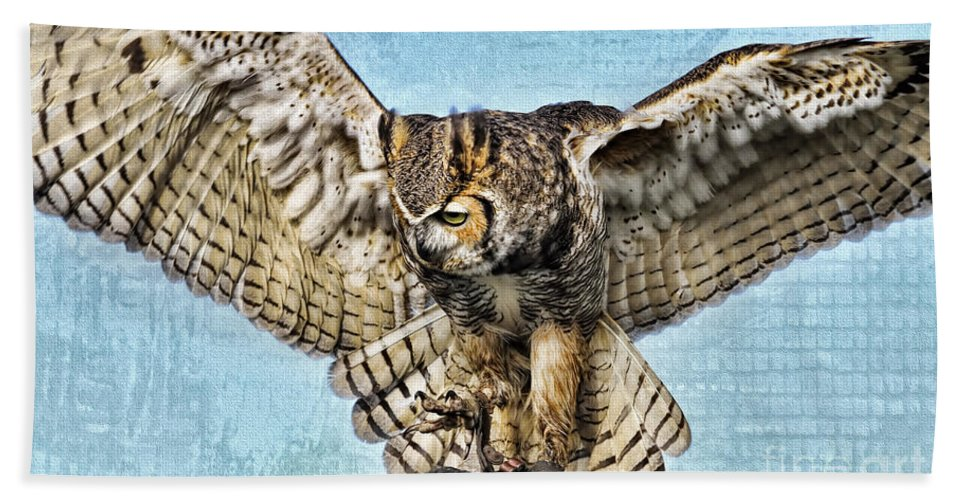 Owl Bath Sheet featuring the photograph I Want To Fly by Deborah Benoit
