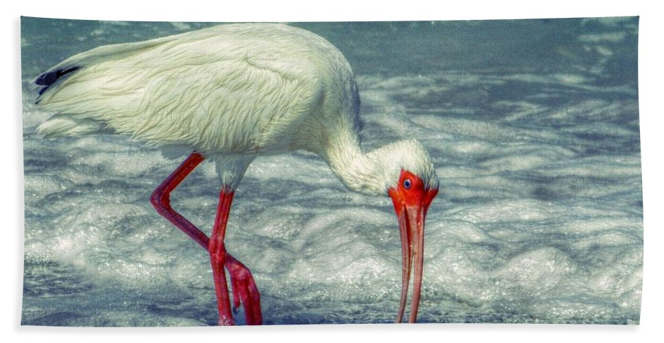 Ibis Hand Towel featuring the digital art Ibis Feeding by Valerie Reeves