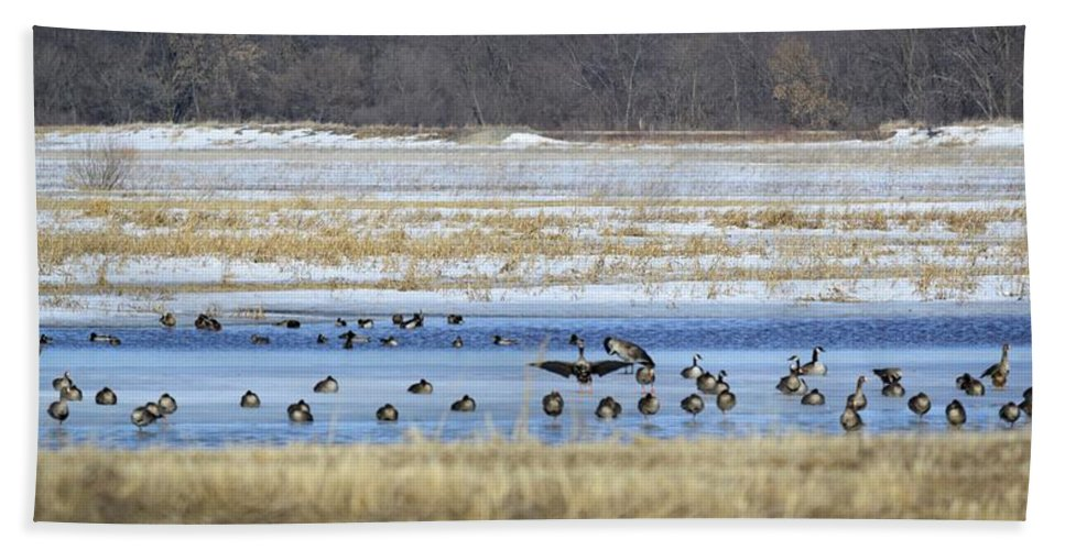 Capades Hand Towel featuring the photograph Ice Capades by Bonfire Photography