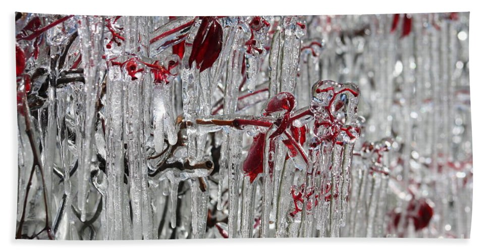 Ice Bath Sheet featuring the photograph Ice Fence by Brandi Maher