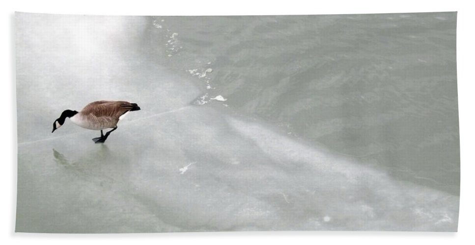 Water Bath Sheet featuring the photograph Ice Goose by Joyce Wasser