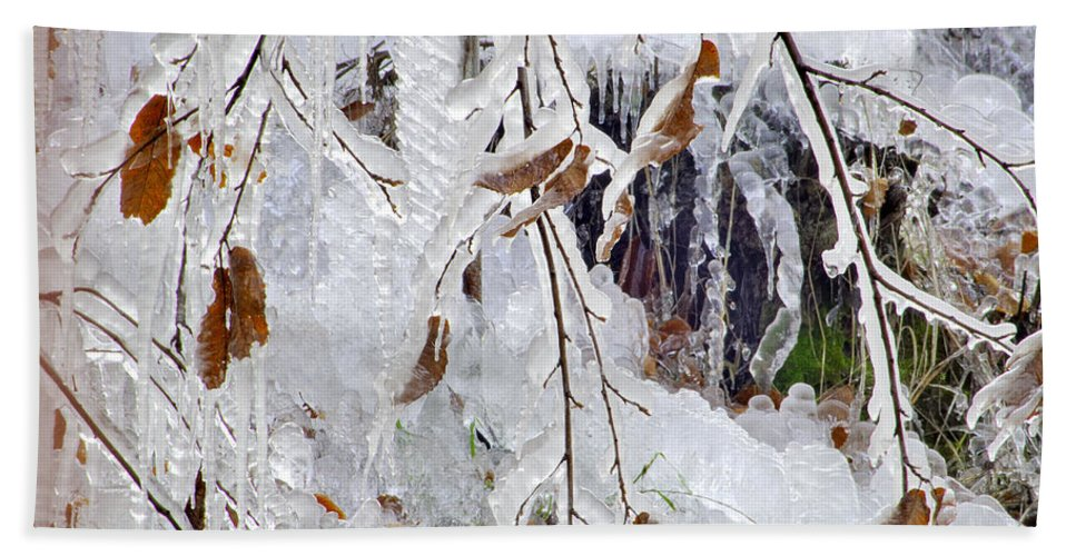 Bath Sheet featuring the photograph Ice Leaves by Guido Montanes Castillo
