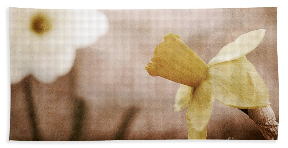 Flowers Hand Towel featuring the photograph If These Flowers Could Speak by Trish Mistric