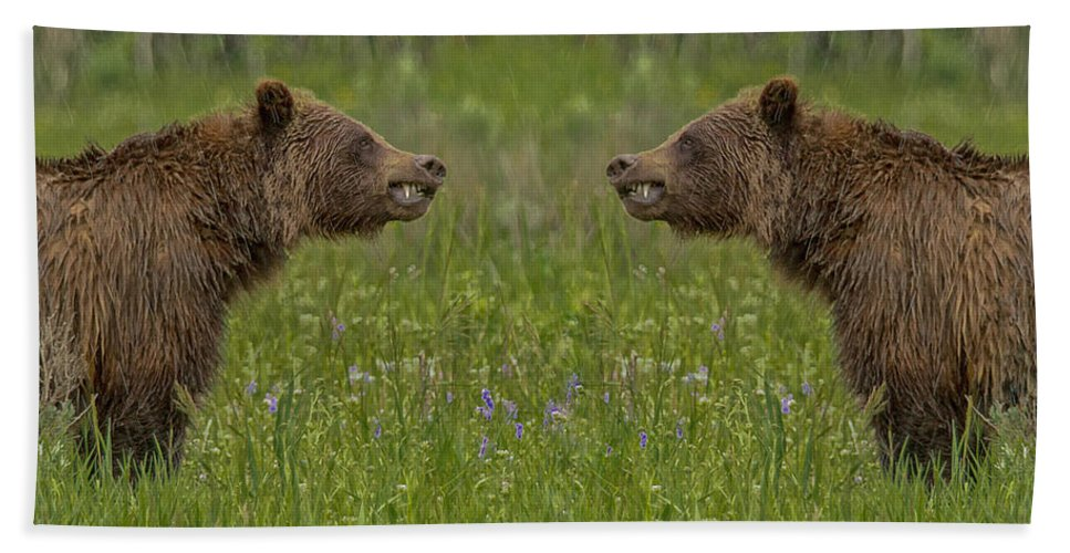 Wyoming Hand Towel featuring the photograph I'll Kick Your Butt No I'll Kick Your Butt by Michael J Samuels