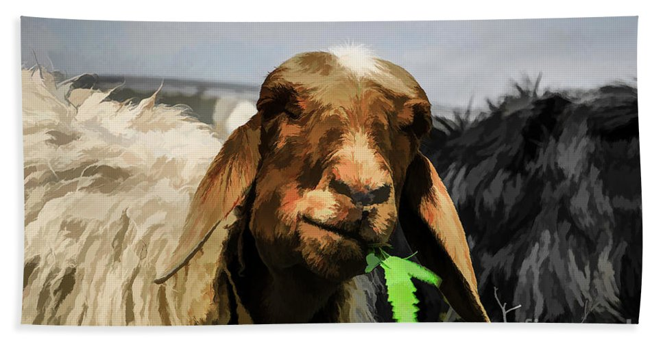 Brown Bath Sheet featuring the photograph Illustration Of Sheep by Dan Yeger