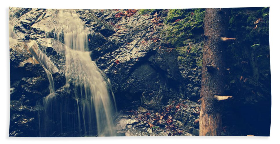 Uvas Canyon County Park Hand Towel featuring the photograph I'm Not Giving Up On You by Laurie Search