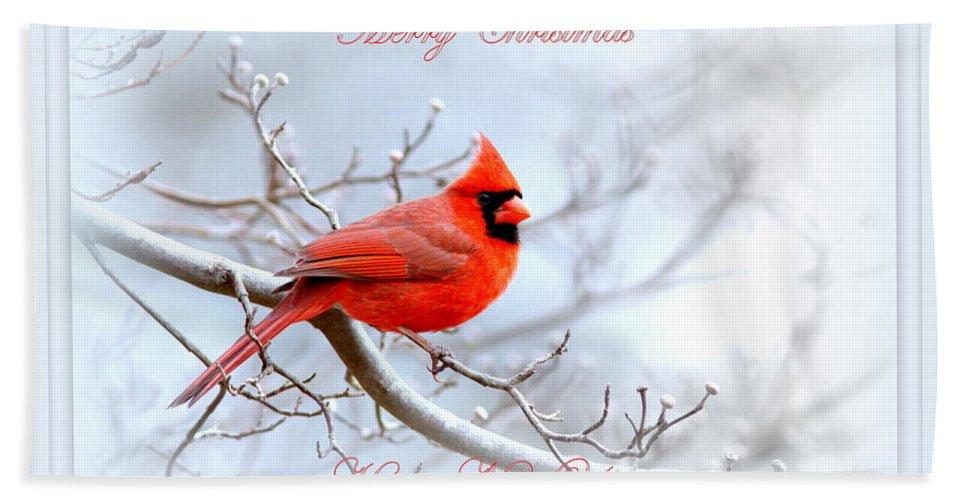 Cardinal Bath Sheet featuring the photograph Img 2559-25 by Travis Truelove