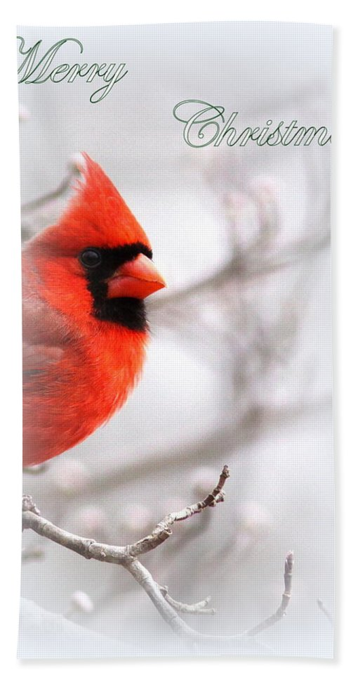 Cardinal Bath Sheet featuring the photograph Img 2559-40 by Travis Truelove