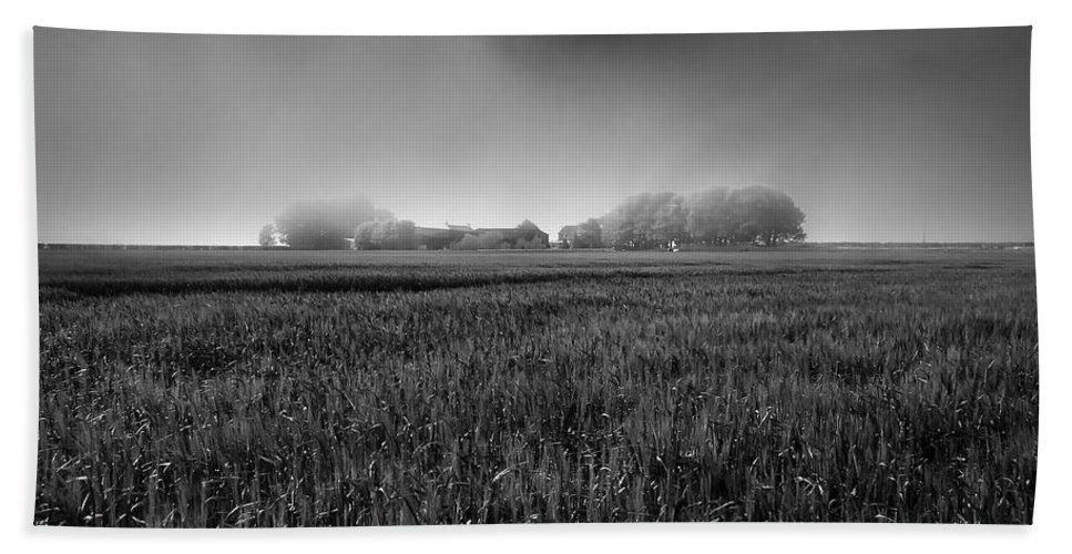 Atmospheric Hand Towel featuring the photograph In A Fog by Svetlana Sewell