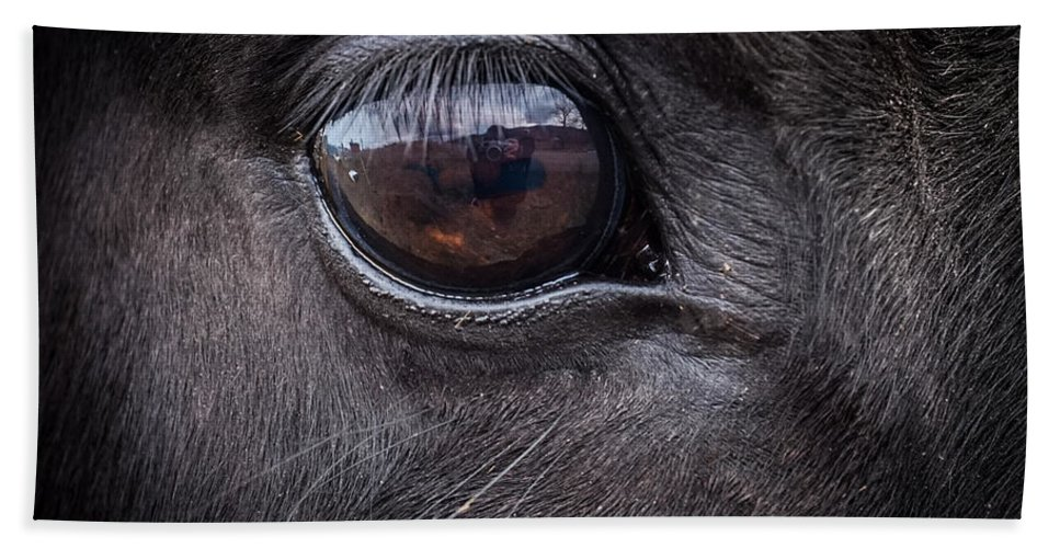 Horse Hand Towel featuring the photograph In A Horse's Eye by Michele Wright