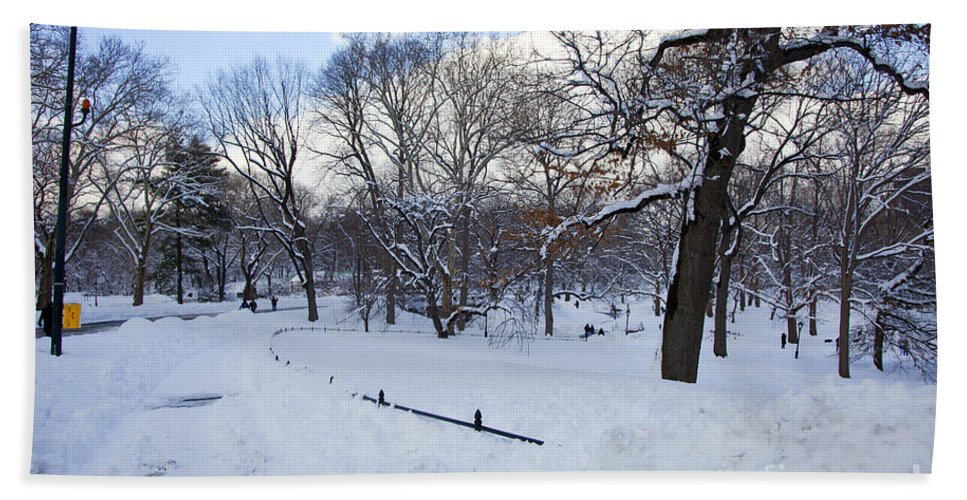 Snow Hand Towel featuring the photograph In Central Park by Madeline Ellis