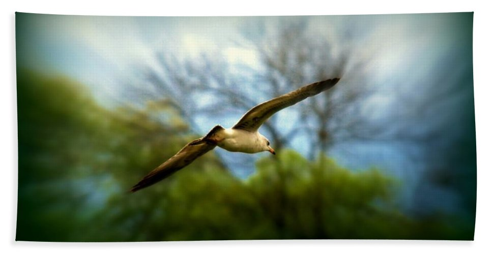 Sea Gall Hand Towel featuring the photograph In Flight by Scott Polley