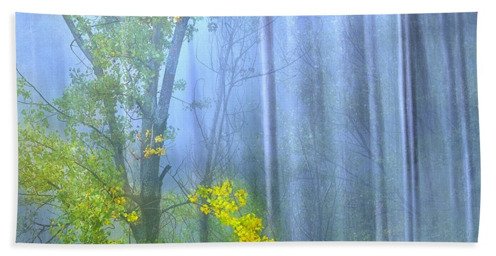 Landscapes Hand Towel featuring the photograph In The Blue Forest by Guido Montanes Castillo