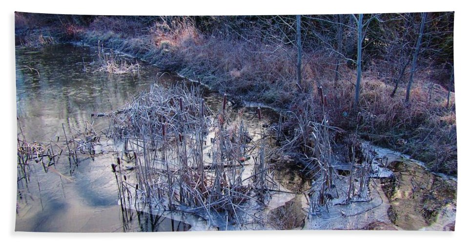 Winter Landscape Bath Sheet featuring the photograph In The Corner Of The Pond by John Malone