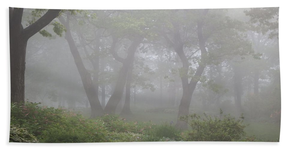 Fog Hand Towel featuring the photograph In The Garden by Alison Gimpel
