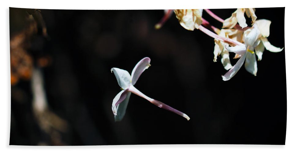 Petals Hand Towel featuring the photograph In The Letting Go by Joe Schofield