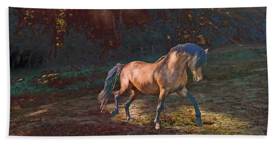 Horse Bath Sheet featuring the photograph In The Light by Patricia Keller