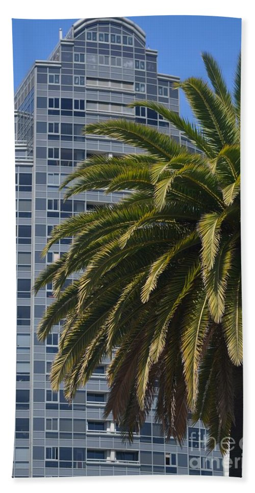 Palms Hand Towel featuring the photograph In The Shadows Of The Palm by Beth Sanders