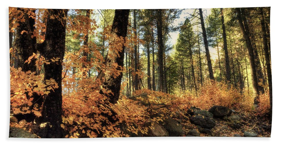 Arizona Bath Sheet featuring the photograph In The Woods by Saija Lehtonen