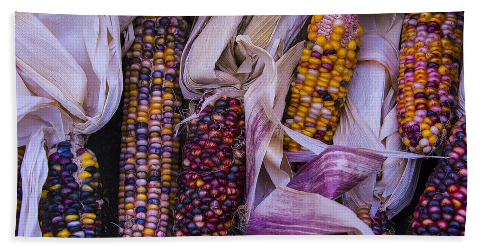 Colorful Bath Sheet featuring the photograph Indian Corn Harvest by Garry Gay