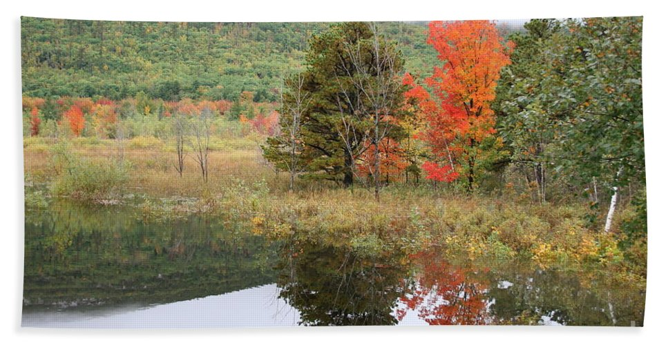 Autumn Hand Towel featuring the photograph Indian Summer Acadia Park by Christiane Schulze Art And Photography