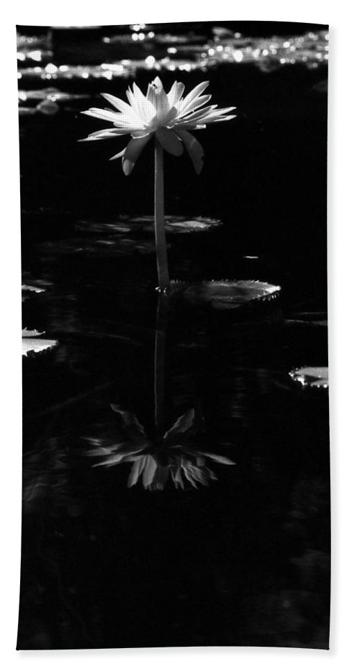 Water Lily Bath Sheet featuring the photograph Infrared - Water Lily 03 by Pamela Critchlow