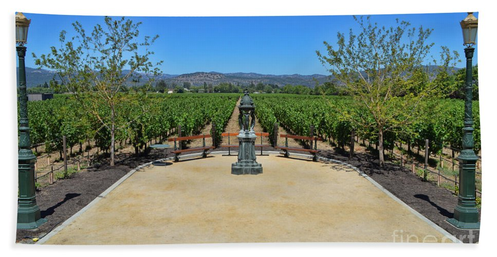 Inglenook Vineyard Hand Towel featuring the photograph Inglenook Vineyard -3 by Tommy Anderson
