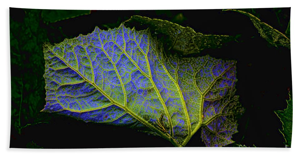 Leaf Bath Sheet featuring the photograph Inner Glow by Casper Cammeraat