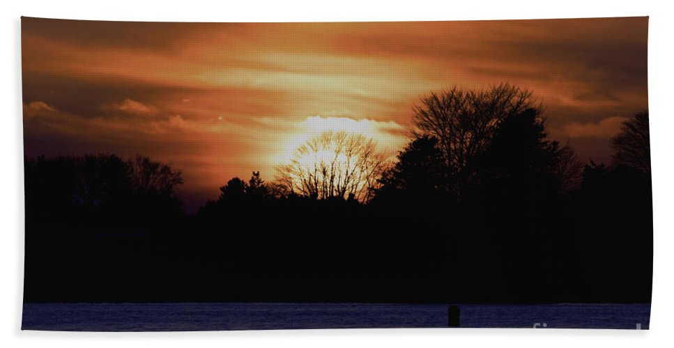 Borough Hand Towel featuring the photograph Into The Trees by Joe Geraci