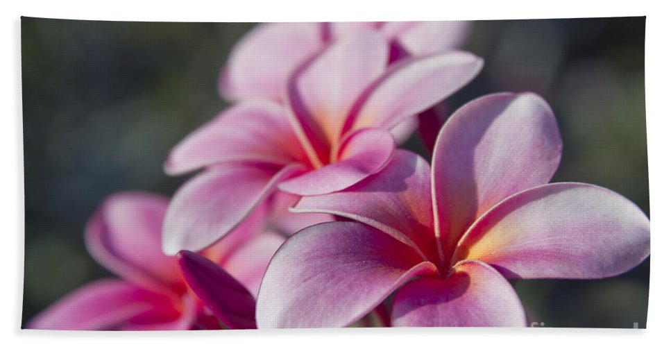 Aloha Hand Towel featuring the photograph intoxicated by Love by Sharon Mau