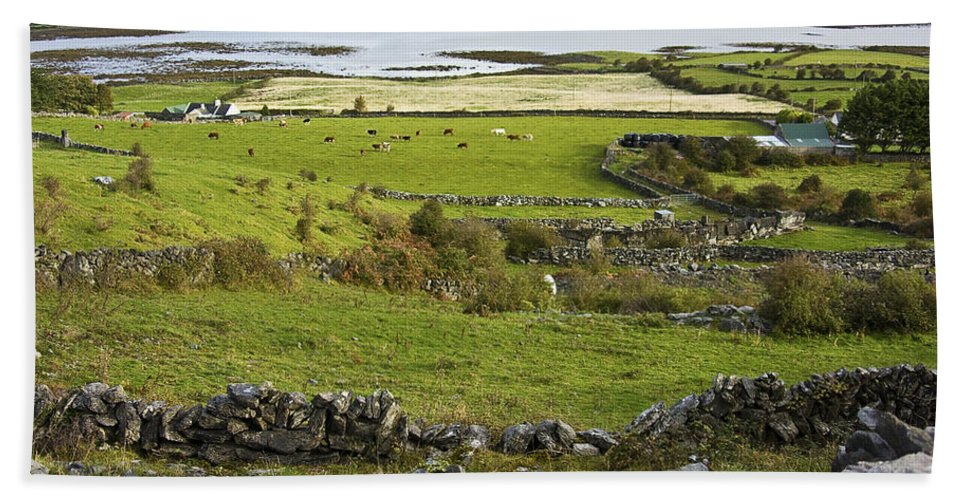 Ireland Hand Towel featuring the photograph Ireland Farm by Sharon M Connolly
