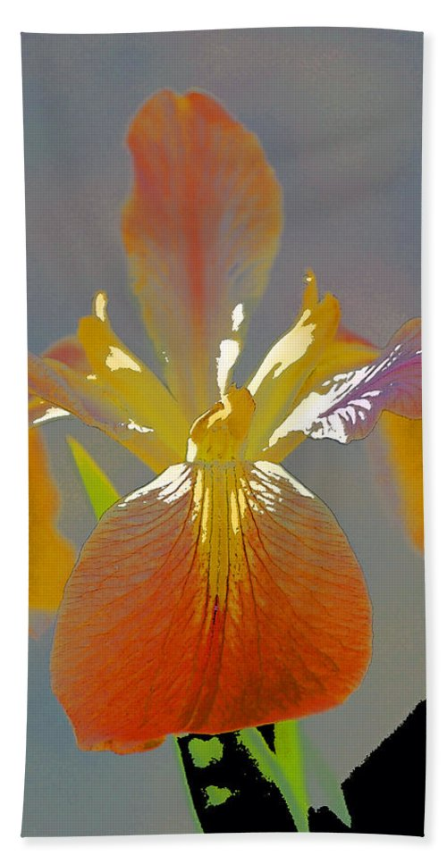 Floral Hand Towel featuring the photograph Iris 62 by Pamela Cooper