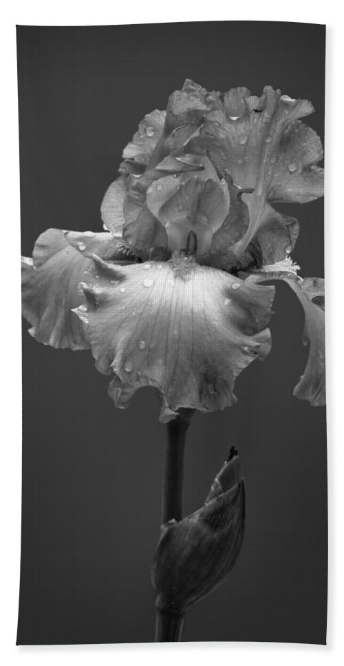 Black And White Bath Sheet featuring the photograph Iris After The Rain by David and Carol Kelly