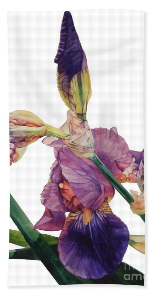 ​​watercolor Hand Towel featuring the painting Watercolor Of A Tall Bearded Iris In A Color Rhapsody by Greta Corens