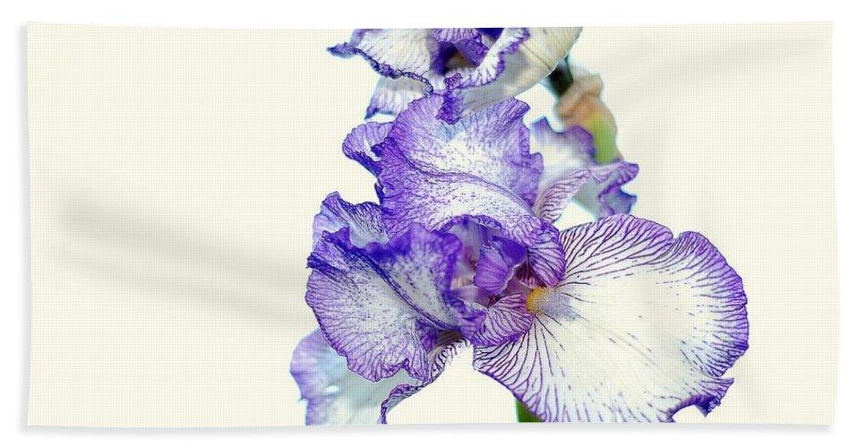 Iris Bath Sheet featuring the photograph Iris by Todd Hostetter