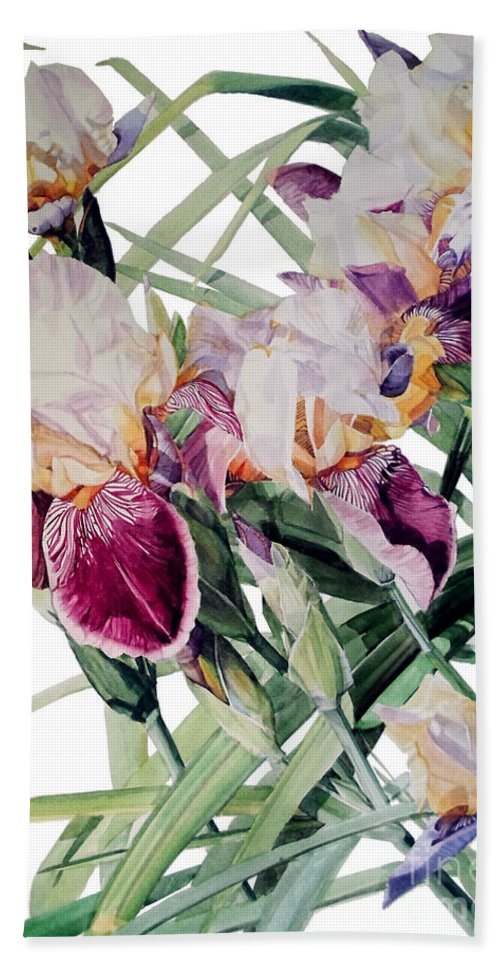 watercolor Hand Towel featuring the painting Watercolor Of Tall Bearded Irises I Call Iris Vivaldi Spring by Greta Corens