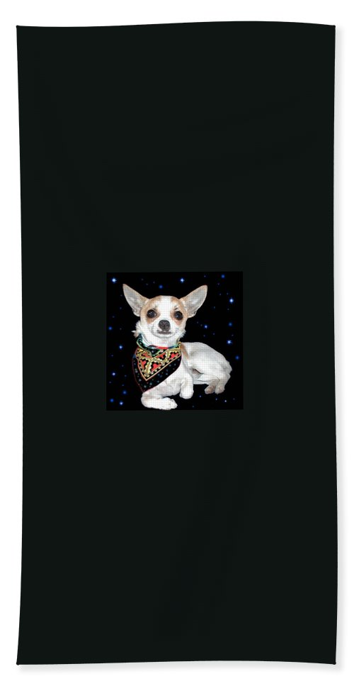 Chihuahua Hand Towel featuring the photograph It Was In The Stars by Leah Delano