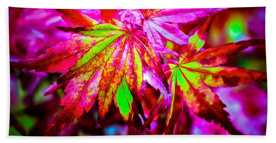 Maple Bath Sheet featuring the photograph Japanese Bonfire Maple by Brian Tada