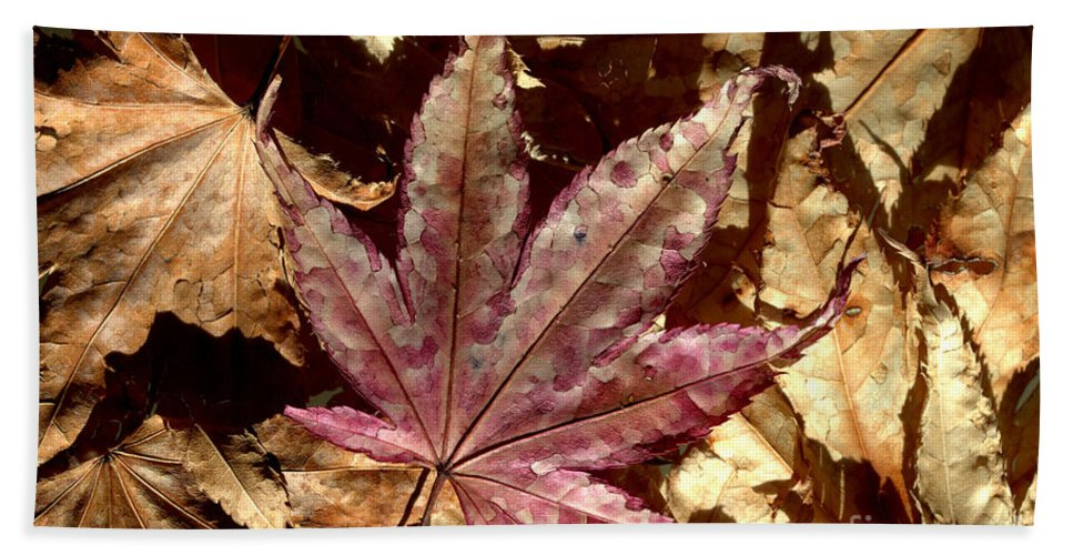 Brown Hand Towel featuring the photograph Japanese Maple Tree Leaves by Kenny Glotfelty