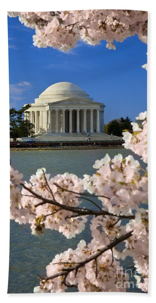 Thomas Jefferson Hand Towel featuring the photograph Jefferson Memorial Cherry Trees by Brian Jannsen