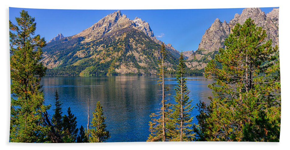 Jenny Lake Bath Sheet featuring the photograph Jenny Lake Overlook by Greg Norrell