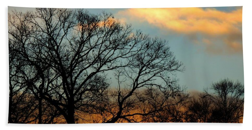 Sunrise Bath Sheet featuring the photograph Jet Plane by Michele Nelson