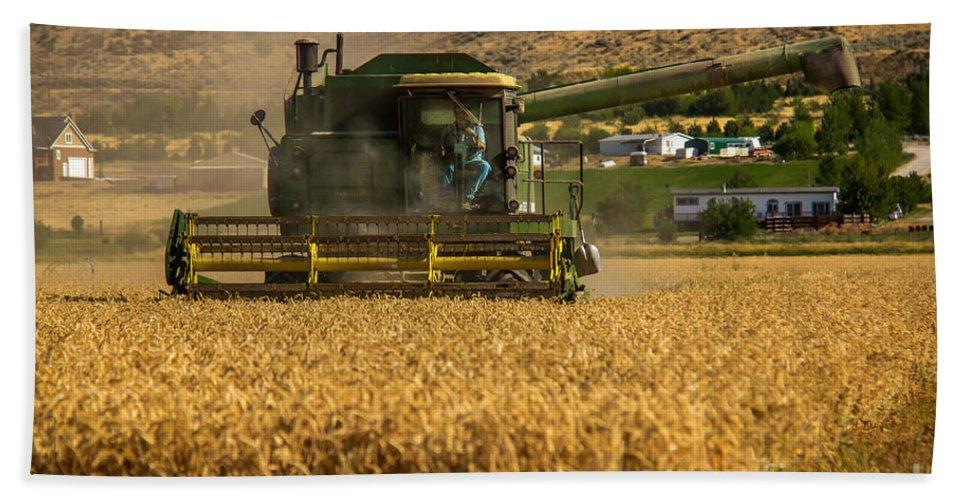 Wheat Bath Sheet featuring the photograph John Deer by Robert Bales